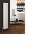 REINA Colona Column Radiator - Vertical RAL Coloured