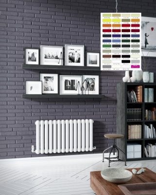 DQ Cassius Horizontal Radiator - RAL Coloured